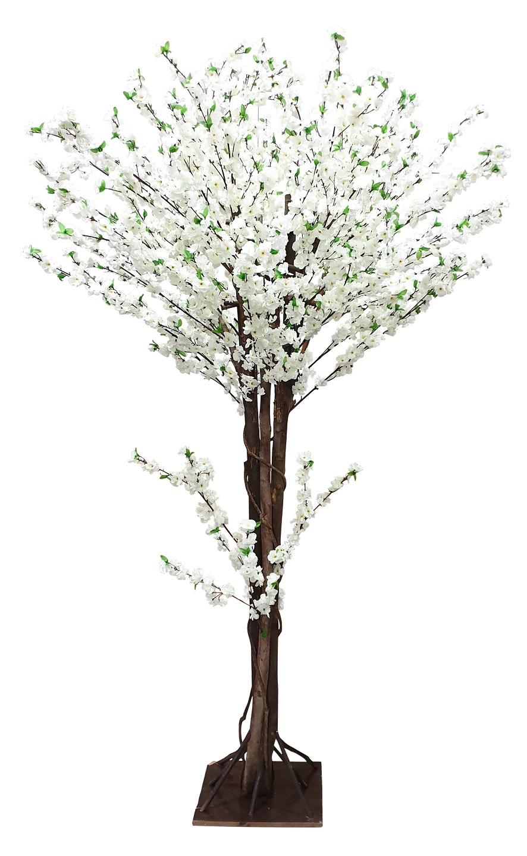 Grote Japanse Kunst Bloesemboom Wit 260cm