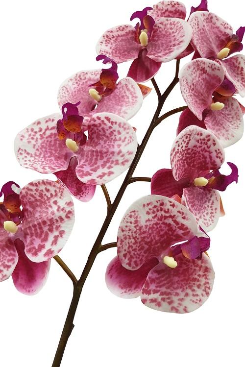 Roze Hang Orchidee 125cm