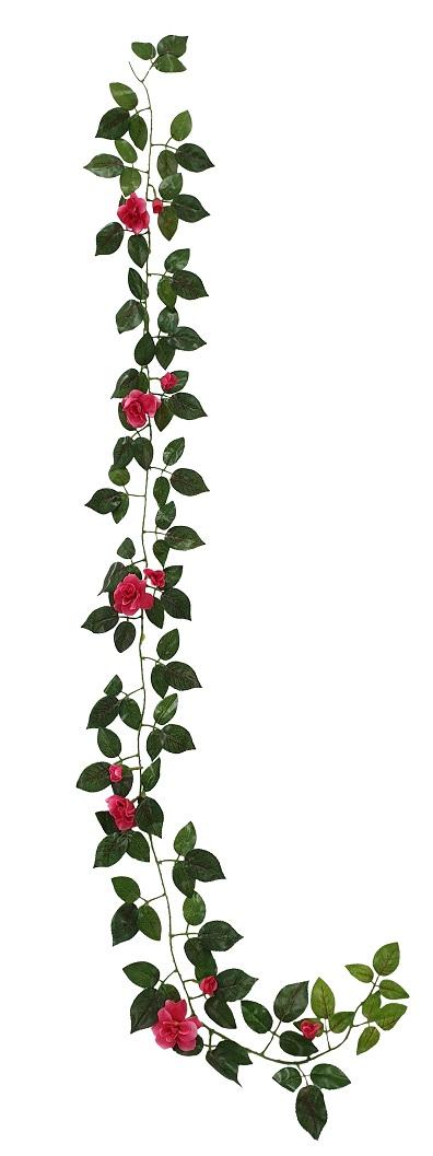 Rozenslinger Donker Rose 165cm