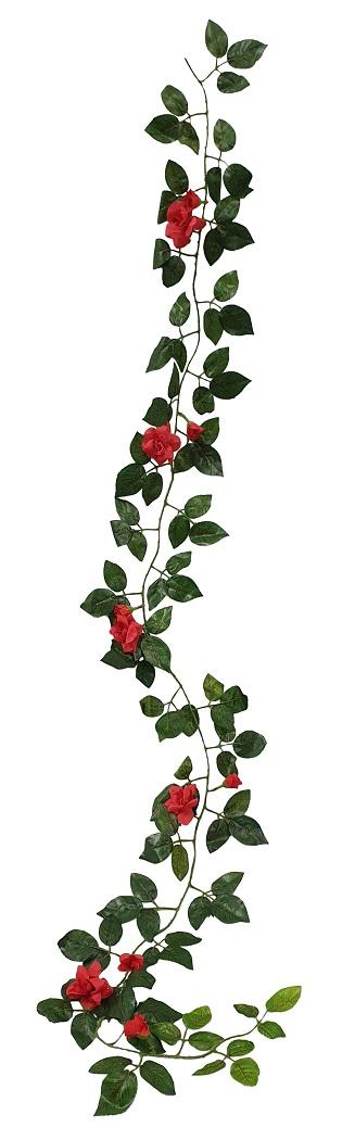 Rozenslinger Rood 165cm