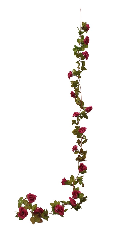 Fuchsia Rozenslinger 220cm