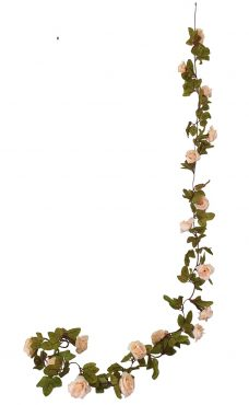 Zalmrose Rozenslinger 220cm