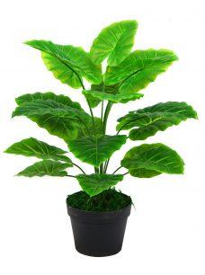 Namaak Groene Taro Plant in Pot 60cm