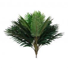 Palmboom Kruin met 30 Bladeren