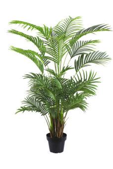Nep Areca Palm Panama 150cm