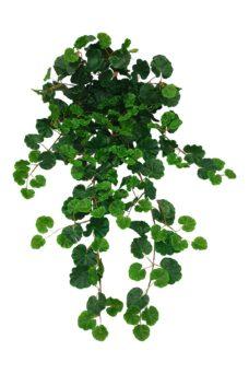Geraniumblad Bundel 90cm