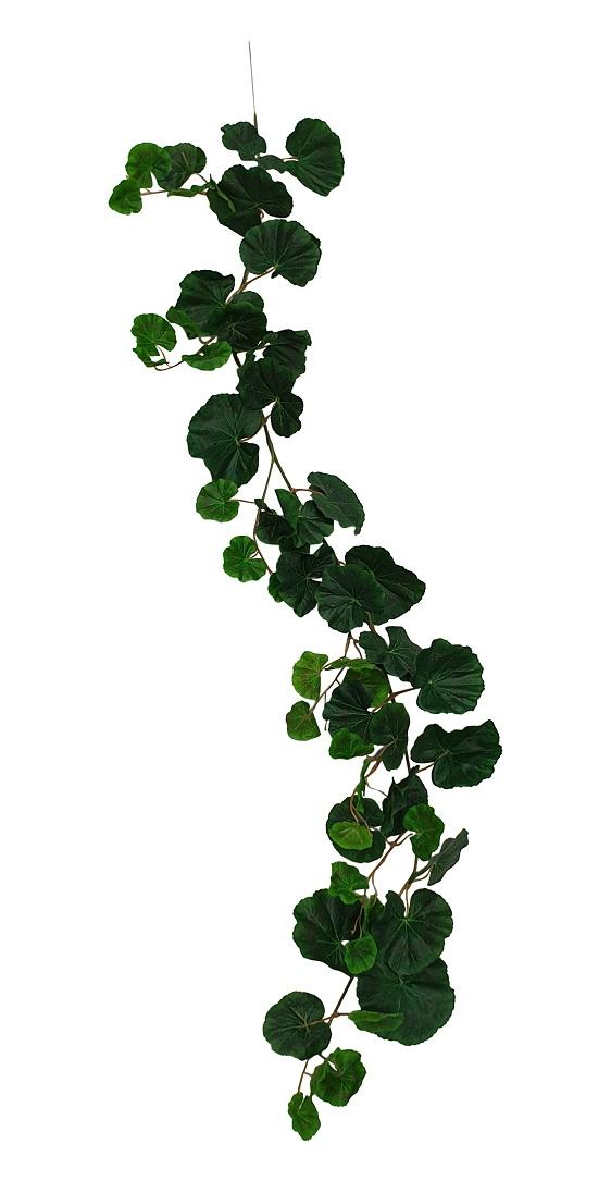Geranium Blad Slinger 120cm