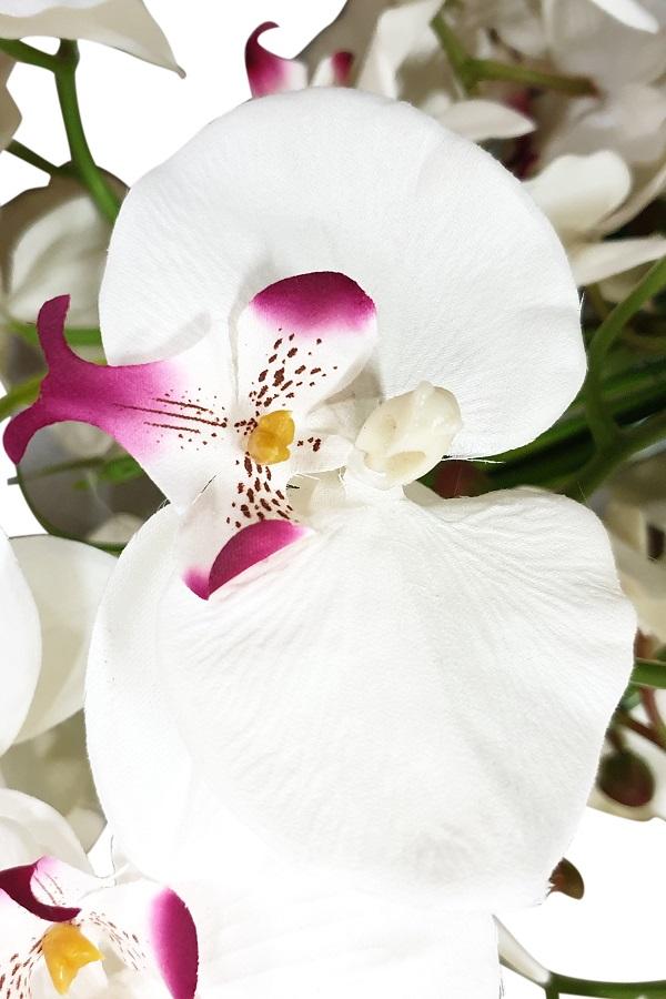Grote Zijde Orchidee Wit