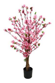 Rose Bloesem Boompje 90cm