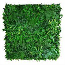 Groene Mix Sedumwand