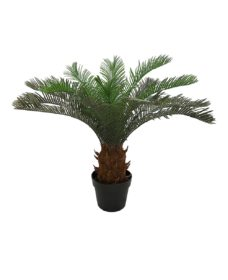 Cycas Namaak Palmboom Malta