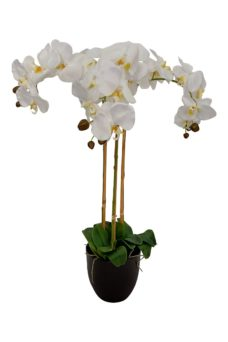 Grote Witte Nep Orchidee 80cm