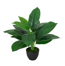 Kunst Anthurium Plant Met Zwarte Pot