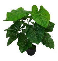 Kunst Taro Plant Met Zwarte Pot 50cm