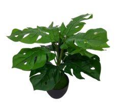 Nep Gatenplantje Met Zwarte Pot 35cm