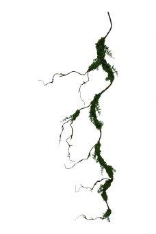 Kunst Mosliaan 180cm