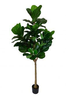 Grote Kunst Tabaksplant 175cm