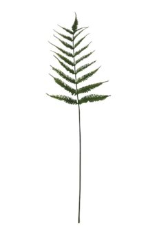 Kunst Varenblad 85cm